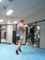 STRATÉGIE ET TACTIQUE DE COMBAT: M.M.A. (Mixed Martial Arts)